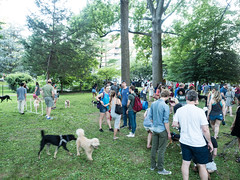 Yappy Hour Popup dog park at Elm Street urban park in Bethesda, MD. (Montgomery Parks, MNCPPC) Tags: band bethesda community dog dogpark dogs elmstreeturbanpark event family food montgomeryparks music popup popupparks urban urbanpark