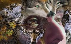 progresión lupina (Wrabitt / Thanks all visitors & followers...) Tags: lupino lobo wolf lupo eye ojos occhio arte art figurativio creativo creatividad mirada sguardo