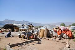 20180330-_DSC0073.jpg (drs.sarajevo) Tags: sarvestan ruraliran iran nomads farsprovince chamsatribe