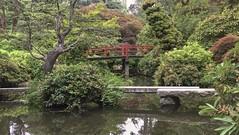 Pond and Bridge (Mr.LeeCP) Tags: gardens summer seattle washington japanese