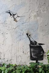 Banksy_2572 rue des Hospitalières Saint Gervais Paris 04 (meuh1246) Tags: streetart paris banksy ruedeshospitalièressaintgervais paris04 animaux rat bouteille