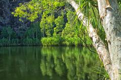 Gunlom Swimming Hole (Peedie68) Tags: australia northernterritory nt water kakadunationalpark gunlomfalls reflection pool rockpool landscape