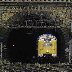 Light at the End of the Tunnel (McTumshie) Tags: 20180616 55009 dps deltic delticpreservationsociety kingscrossstation king'scross london thealbertgilmourmemorialcharter class55 railway england unitedkingdom