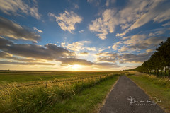 Into the wide (Ellen van den Doel) Tags: 2018 flakkee natuur landscape sunset nature avond outdoor slikken evening clouds goeree sun zon zonsondergang road lucht natuurgebied juni grass weg sky color landschap gras wolken field