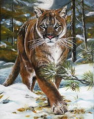 Commissioned Painting (Heidi's_PaSSioNs ღ) Tags: cougar panther acrylics painting realism wild