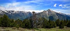 Monteixo (2.905 m) 3 (Xevi V) Tags: monteixo pyrenees