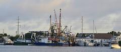 Trawler and Company (pjpink) Tags: boat ship trawler channel water coast coastal eastcoast crystalcoast beaufort northcarolina nc carolina may 2018 spring pjpink 2catswithcameras