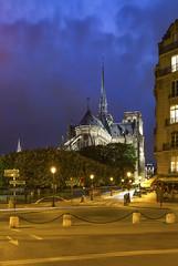 Notre Dame de Paris (Didier Ensarguex) Tags: 75 notredamedeparis îledelacité heurebleue architecture didierensarguex 6d 1635 canon paris