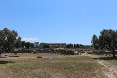IMG_4908 Paestum (drayy) Tags: rome roman greek ancient magnagraecia paestum italy europe campania temple greektemple