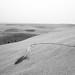 Sand dunes near Sukbaatar, Mongolia