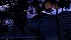 DSC06984 (A Common Courtesy) Tags: a common courtesy wellington auckland new zealand camera photo bw color black white day night monochrome bokeh sony nex 5a nex5a focuspeaking minolta mc pg 50mm 14rokkor fotodiox adapter
