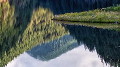 Point of Reflection (Matthew James Lewis) Tags: lordslake flowers reflection mountains trees forest firtrees daisy adayatwork work water washingtonstate