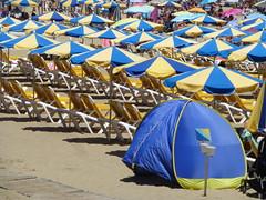 Blue and yellow (skumroffe) Tags: puertorico grancanaria islascanarias canaryislands kanarieöarna blue yellow blueandyellow blå gul blågul parasol parasoll beach strand playa playadepuertorico puertoricobeach spain spanien españa