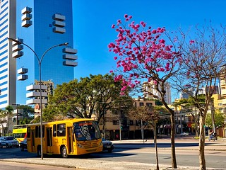 Curitiba in purple, yellow and blue.