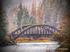 Hamma Hamma River Bridge (George Stenberg Photography) Tags: washingtonstate pacificnorthwest hoodcanal eldonwa bridge hammahammariver trees river water