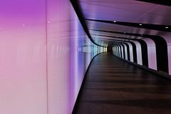ytilaernU (Douguerreotype) Tags: london uk metro underground urban purple british city tunnel britain subway tube reflection gb england