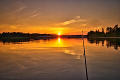 Fiske i deltat (johan.bergenstrahle) Tags: 2018 älv bridge bro evening finepicsse fishing fiska juli july kväll landscape landskap natur solnedgång sommar summer sunset sverige sweden umeriver umeälv vindelälven