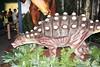 IMG_0225 (jmac33208) Tags: mystic aquarium connecticut fish