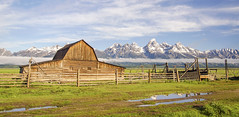 Moulton Barn (jasonwsullivan) Tags: barns buildingsstructures grandtetonnationalpark historicbuildings landscapes mormonrow mountains nationalparks ranches tetons usa wyoming landscape