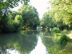 grand union canal (47604) Tags: grand union canal tree bugbrooke water green bridge path