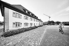 Karlsruhe Musikhochschule b&w 10 (rainerneumann831) Tags: karlsruhe schlossgottesaue architektur bw blackwhite blackandwhite ©rainerneumann fahrradfahrer