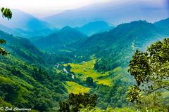 -c201709293-810_5784 (Erik Christensen242) Tags: tânlập hàgiang vietnam vn nature landscape color lowclouds clouds forest