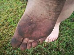 barefoot in nature 142 (dirtyfeet6811) Tags: feet sole toes barefoot dirtyfeet dirtysole feetinnature