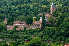 Schloss Zwingenberg in Perspective...... (kanaristm) Tags: zwingenberg schloss germany kanaris kanarist kanaristm tkanaris tmkanaris copyright2018tmkanaris copyright2018kanaristm tmk badenwürttemberg nikon d850 2470mmf28evr