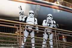 Stormtrooper (Random)
