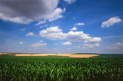 Moldova Farm Fields (Packing-Light) Tags: fujichrome fujivelvia100 velvia100f film analog chrome slides colorful vibrant people culture easterneurope europe moldova 35mm landscape field countryside