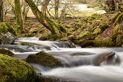 Brecon Fall (Martyn Iles) Tags: natural nature moss stream breconbeacons park nationalpark countryside 6stop neutraldensity ndfilter longexposure brook rapids waterfall wales brecon