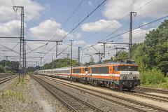 Bad Bentheim 20180708 defecte ICB stam (NS441) Tags: