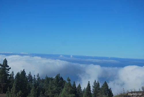 Понад хмарами, Тенеріфе, Канарські острови  InterNetri  013