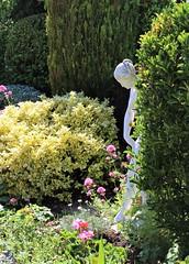 A quiet corner of our friend's lovely  garden (Martellotower) Tags: garden statue shrubs flowers