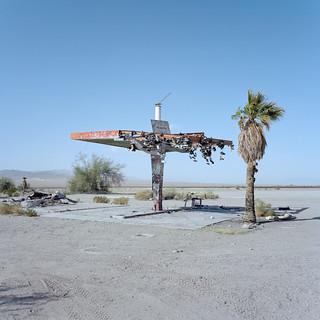 the shoe tree. mojave desert, ca. 2018.