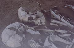 Lovers of Valdaro (~Miel) Tags: lovers innamorati archeologia archeology morbid sepolture burials death skulls cranii scheletri skeletons hug abbraccio amore love mantova museo archeologico museoarcheologico lombardia nikon nikond5200 nikkor 50mm