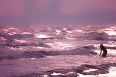 Kugenuma beach (hissy1540851) Tags: japan kanagawa shonan sigma foveon sd1