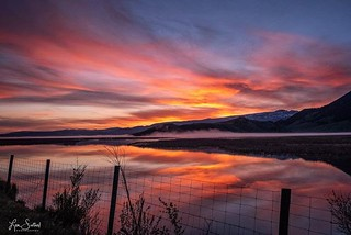 National Elk Reserve Sunrise - Jackson, Wyoming