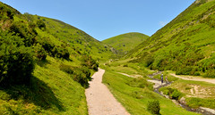 CARDING MILL VALLEY (chris .p) Tags: shropshire cardingmillvalley valley nikon d610 nt nationaltrust england stream summer 2018 hill hills shropshirehills june uk capture scene view landscape
