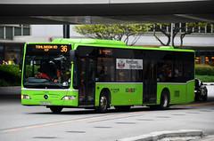 Go-Ahead Singapore Mercedes-Benz O530 Citaro EvoBus (nighteye) Tags: goaheadsingapore mercedesbenz o530 citaro evobus sbs6537e service36 busserviceenhancementprogramme bsep singapore bus