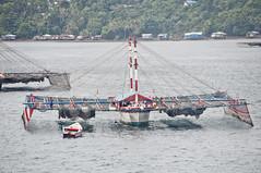 DSC_0778 (yakovina) Tags: silverseaexpeditions indonesia papua newguineaisland jayapura