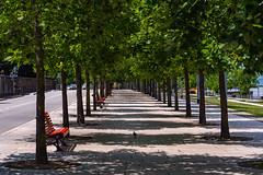 Lago Maggiore, Luino, Parco a Lago (dadofekl) Tags: luino lombardia italien it lagomaggiore italy italia allee