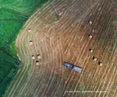 Hay bales in Gap Mills, West Virginia (gbrphoto) Tags: dji westvirginia aerial drone