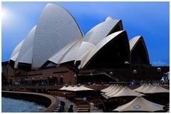 Sailing into Blue (cupitt1) Tags: blue opera house sydney harbour architecture sails