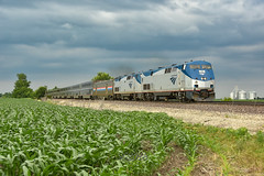 Southwest Chief over corn fields. (Machme92) Tags: american atsf america amtrak p42 railroad railfanning railroads railfans rails rail row railroading railfan sky clouds storms nikon nikond7200 corn farms farm