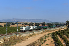 Entre viñedos (L_B_A) Tags: verde renfe 253 bobinero traxx mmb 2530558 alpera