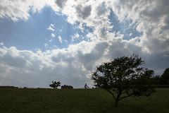 A SMALL AIRPORT, SOME PARKS AND CLOUDS - CLX (Jussi Salmiakkinen (JUNJI SUDA)) Tags: chofu tokyo japan cityscape park airport sky aircraft wood airplane landscape tama 調布 飛行場 空港 林 森 空 武蔵野 多摩 東京 日本 風景 clouds earlysummer 2017 kesäkuu june