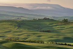 *Val d'Orcia primavera II* (Albert Wirtz @ Landscape and Nature Photography) Tags: albertwirtz toskana tuscany toscana pienza valdorcia primavera frühling spring trail italy italien italia goldenhour goldenestunde grün green natur natura nature landscape paysage paysages paesaggi campagne campo campagna nikon d700 exploring entdecken gentlevalley valleyofthemorningmist rollinghills albertwirtzlandschaftsundnaturfotografie albertwirtzlandscapeandnaturephotography albertwirtzphotography naturepoetry twilight paisaje