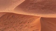 Desert Divisions (gecko47) Tags: landscape aerialshot dunes sanddunes ridges geometric namibia sesriem helicopter namibnaukluftpark sand