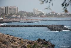 Playa de las Américas, Тенеріфе, Канарські острови  InterNetri  827